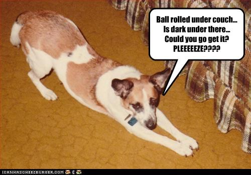 Ball rolled under couch... Is dark under there... Could you go get it? PLEEEEEZE????