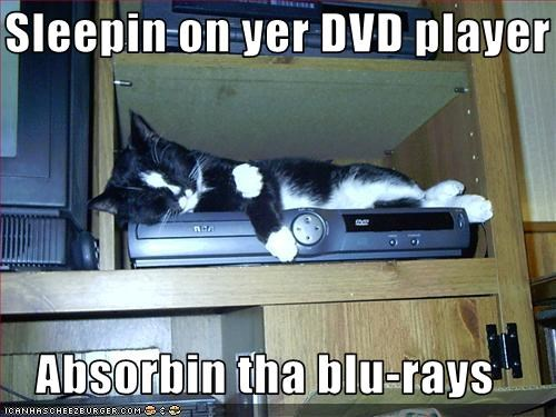 Sleepin on yer DVD player  Absorbin tha blu-rays