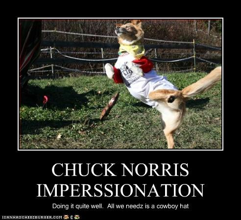 CHUCK NORRIS IMPERSSIONATION