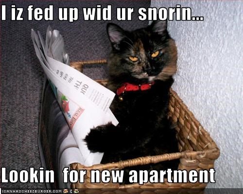 I iz fed up wid ur snorin...  Lookin  for new apartment