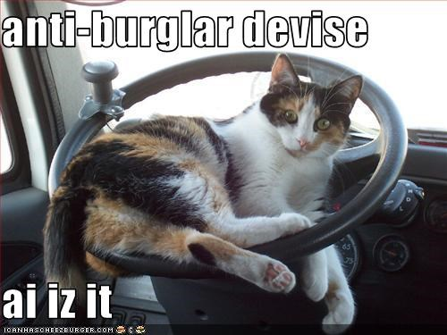 anti-burglar devise  ai iz it