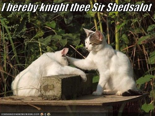 I hereby knight thee Sir Shedsalot