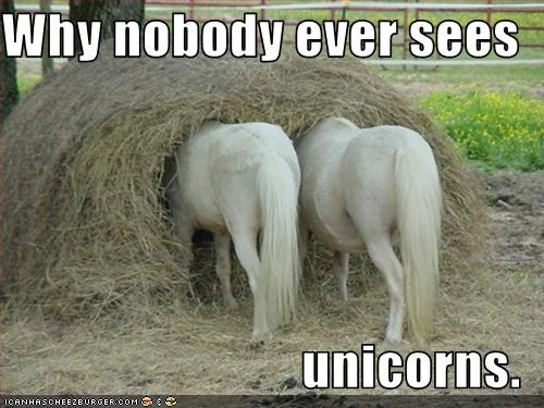 Why nobody ever sees   unicorns.