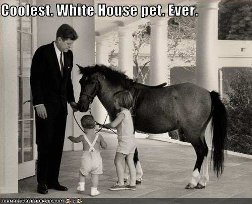 Coolest. White House pet. Ever.