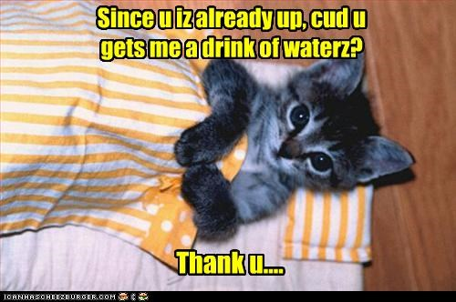 Since u iz already up, cud u gets me a drink of waterz?