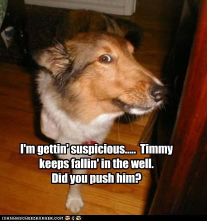 I'm gettin' suspicious.....  Timmy keeps fallin' in the well.      Did you push him?