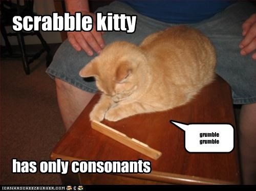 scrabble kitty