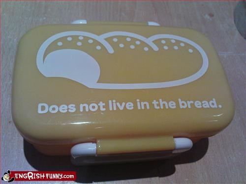 bento box,bread,g rated,live