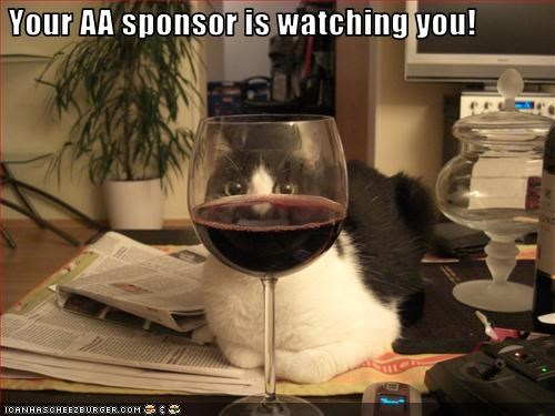 Your AA sponsor is watching you!