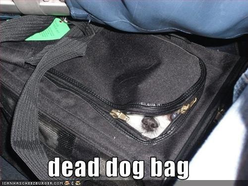 dead dog bag