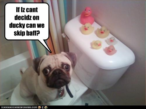 If Iz cant decidz on ducky can we skip baff?