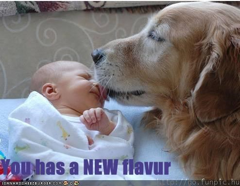 You has a NEW flavur