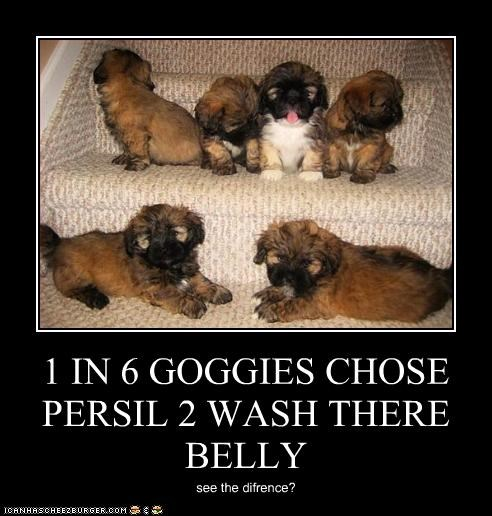 1 IN 6 GOGGIES CHOSE PERSIL 2 WASH THERE BELLY