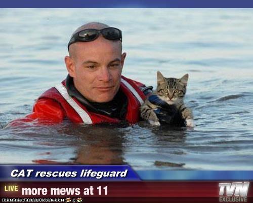 CAT rescues lifeguard - more mews at 11