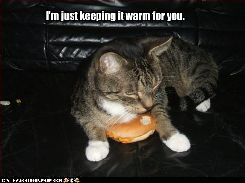 I'm just keeping it warm for you.