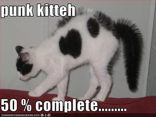 punk kitteh  50 % complete.........