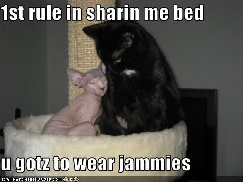 1st rule in sharin me bed                 u gotz to wear jammies