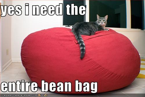 yes i need the  entire bean bag