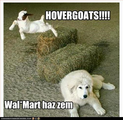 HOVERGOATS!!!!