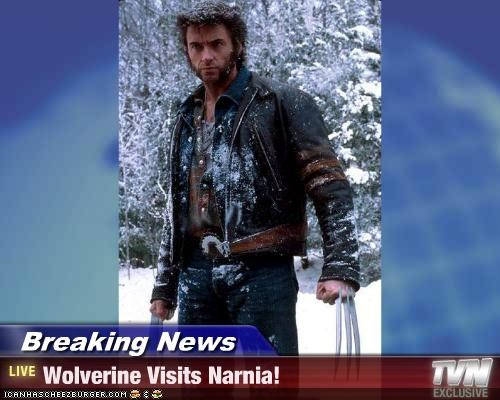 Breaking News - Wolverine Visits Narnia!