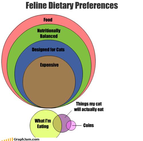 balanced,cat,coins,design,dietary,eat,eating,expensive,feline,food,nutrional,preferences,venn diagram