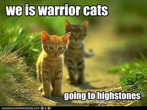we is warrior cats