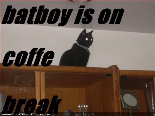 batboy is on coffe  break