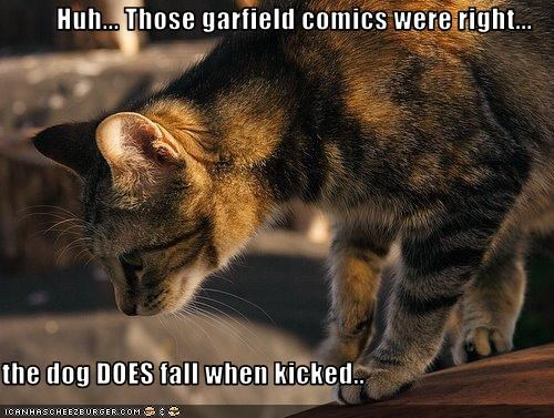 Huh... Those garfield comics were right...  the dog DOES fall when kicked..
