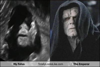 emperor,fetus,Hall of Fame,hood,star wars,ultrasound