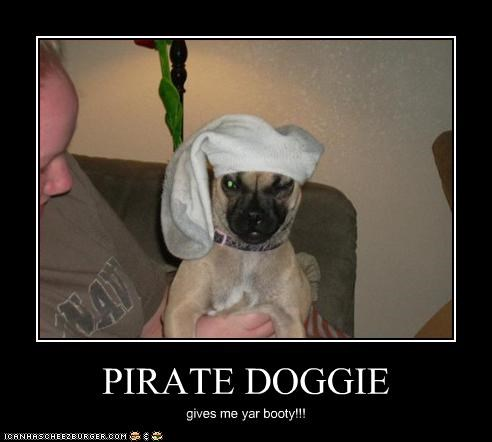 PIRATE DOGGIE