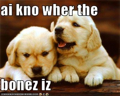 ai kno wher the  bonez iz