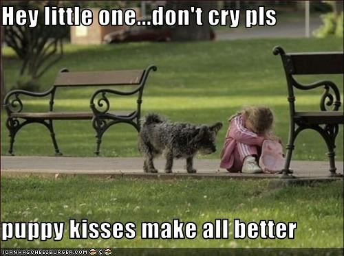 Hey little one...don't cry pls  puppy kisses make all better