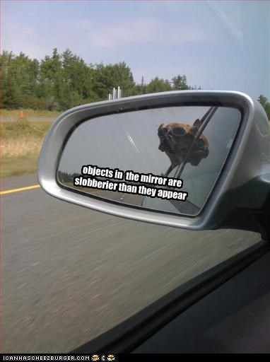 objects in  the mirror are slobberier than they appear