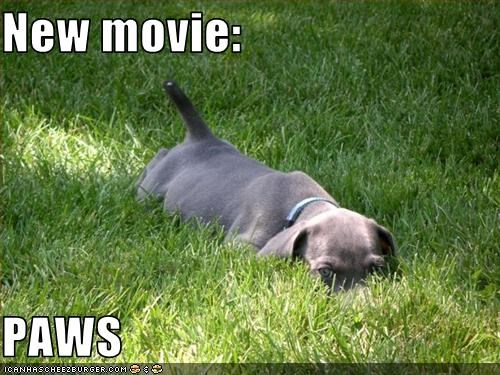 New movie:  PAWS