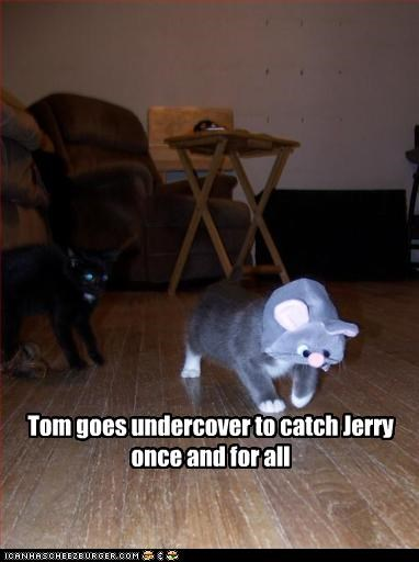 Tom goes undercover to catch Jerry once and for all