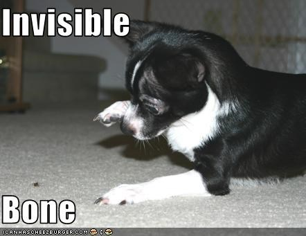 Invisible  Bone