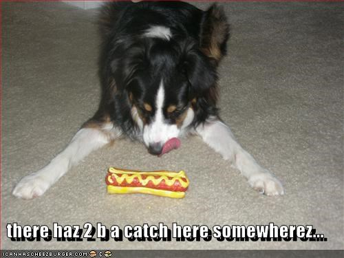 there haz 2 b a catch here somewherez...