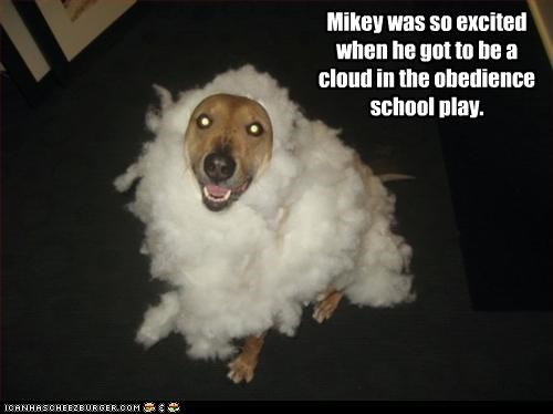 Mikey was so excited when he got to be a cloud in the obedience school play.
