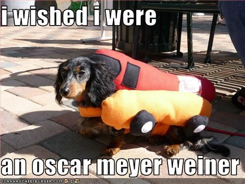 i wished i were   an oscar meyer weiner