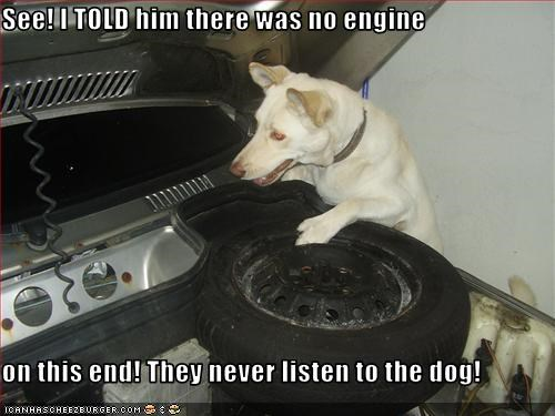 See! I TOLD him there was no engine  on this end! They never listen to the dog!