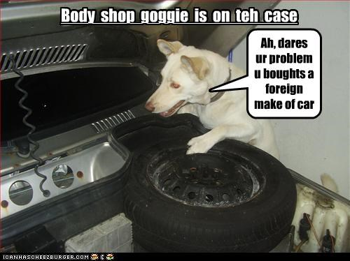 Body  shop  goggie  is  on  teh  case