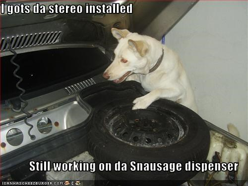 I gots da stereo installed  Still working on da Snausage dispenser