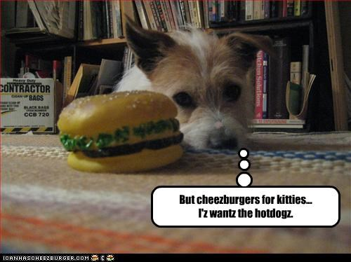 But cheezburgers for kitties... I'z wantz the hotdogz.