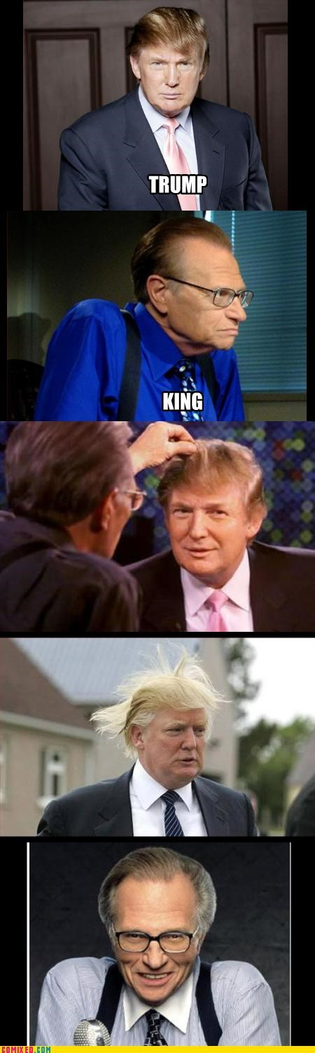 TRUMP VS KING