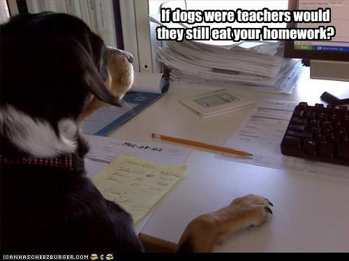 If dogs were teachers would they still eat your homework?