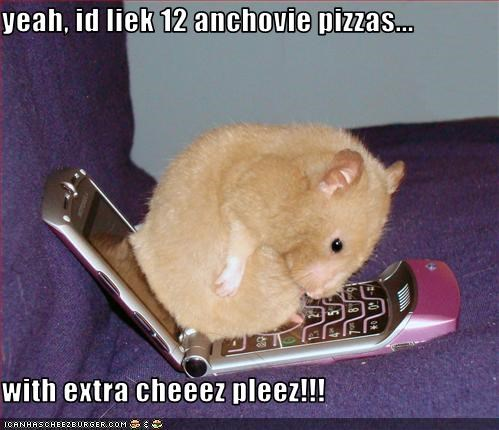 yeah, id liek 12 anchovie pizzas...  with extra cheeez pleez!!!