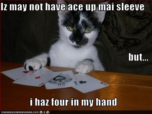 Iz may not have ace up mai sleeve but... i haz four in my hand