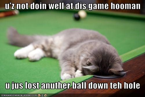 u'z not doin well at dis game hooman      u jus lost anuther ball down teh hole