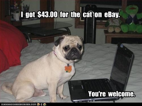 I  got  $43.00  for  the  cat  on  eBay.
