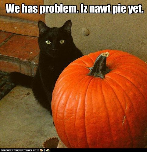 We has problem. Iz nawt pie yet.